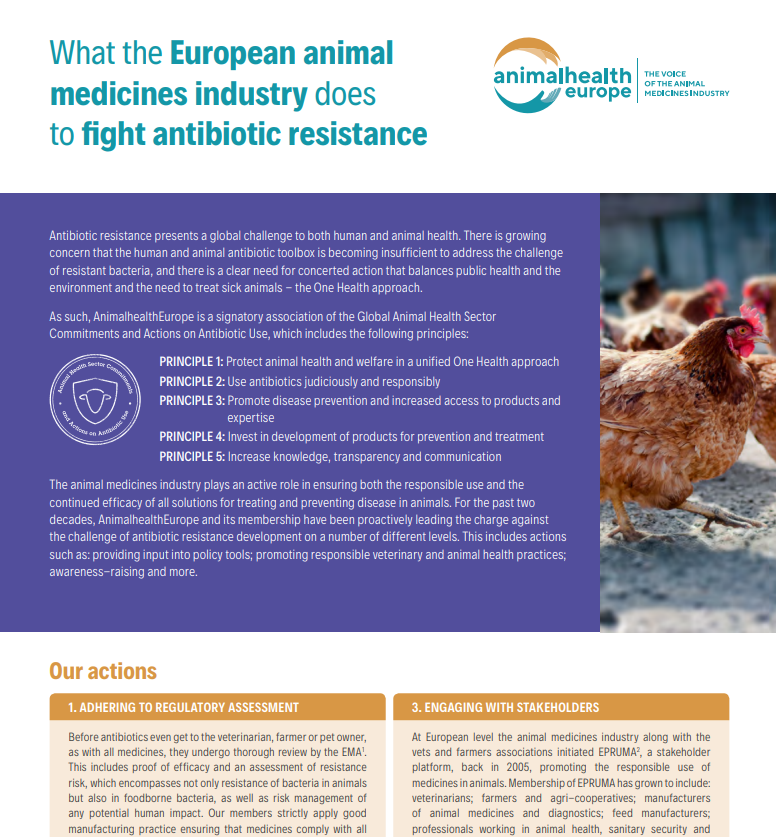 What the European animal medicines industry does to fight antibiotic resistance